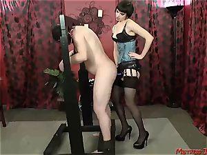 Many female dominance dominatrixes predominate submissive males